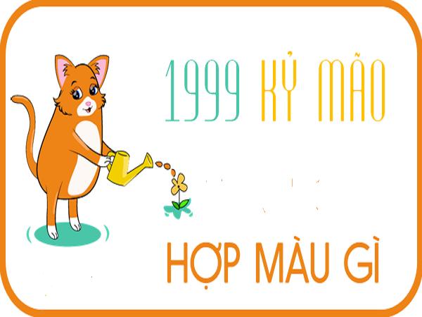 Theo phong thủy tuổi Kỹ Mão sinh năm 1999 hợp màu gì?