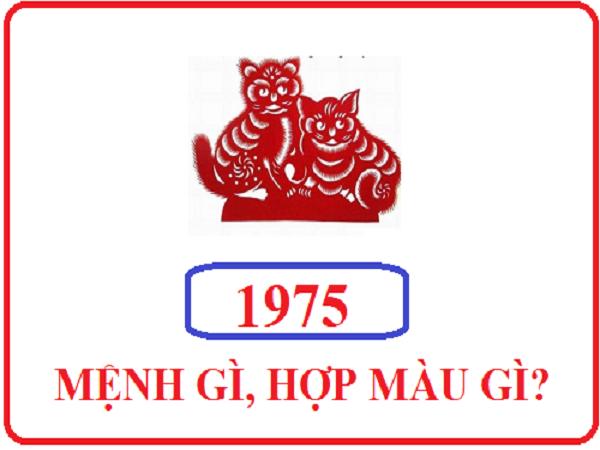 Tuổi Ất Mão sinh năm 1975 hợp màu gì để mang lại may mắn?