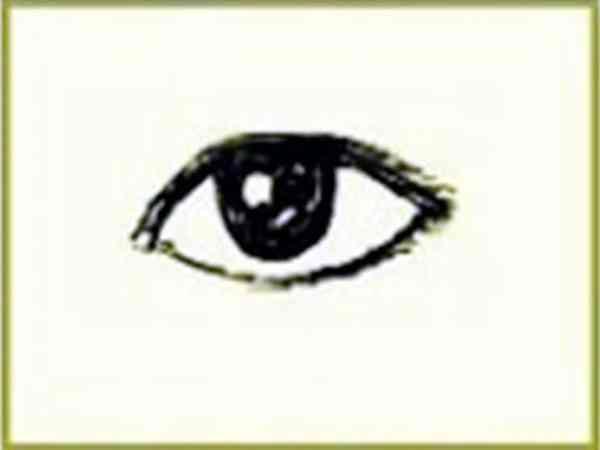 Xem tướng mắt cá luận đoán tính cách vận mệnh